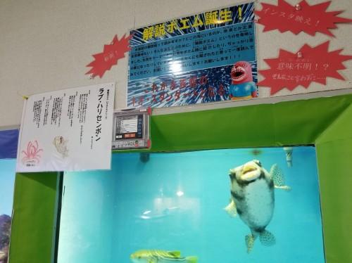 高知 桂浜水族館