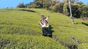 農業用モノレール